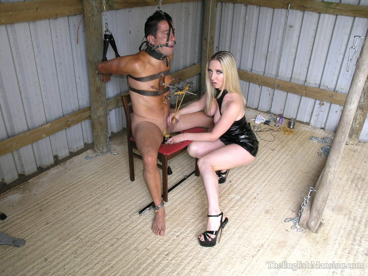 Buttercup reccomend Mistress chris 247 houseboy slave femdom